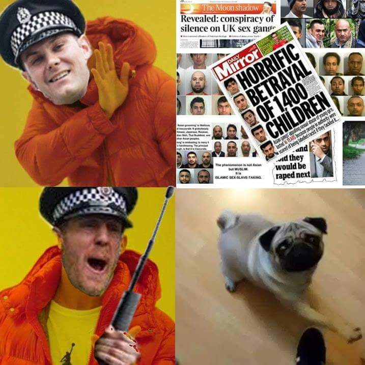 Image result for nazi pug