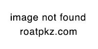 Ddv2P77UQAEguZa.jpg:large